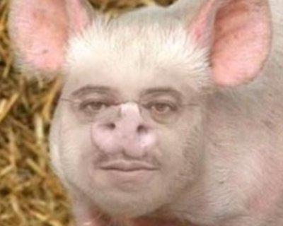 Porker face.