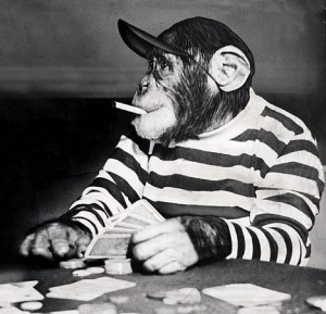 chimp_playing_poker_smoking-300x289
